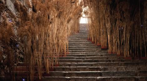 Las líneas del agua - intervención efímera en las escales del carrer de la Pera, Girona, Temps de Flors 2013